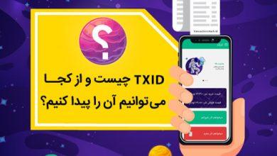 TXID چیست و از کجا میتوانیم آن را پیدا کنیم؟